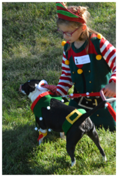 A little girl and her dog both dressed as elves for the dog show