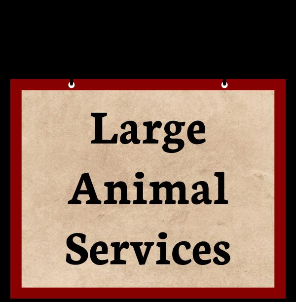 Animal Hospital - Large