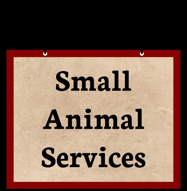 Animal Hospital - Small